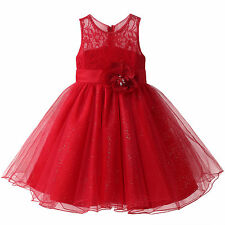 Red Flower Embroider Wedding Girl Dress Princess Birthday Pageant Prom 3-8 Years