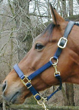Thornhill Premium Padded Chafeless Breakaway Horse Halter - All Colors & Sizes