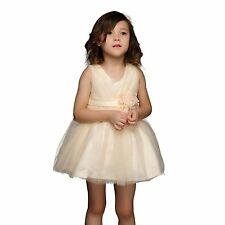 Summer Girls Flower Dresses Princess Birthday Wedding Party Dress Ball Gown 3-8Y