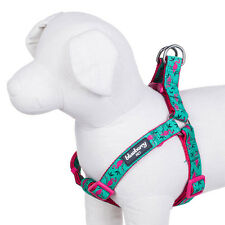Blueberry Pet Pink Flamingo on Light Emerald No Pull Adjustable Dog Harness