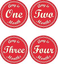 Personalised Monthly Baby Stickers, Milestone Stickers, Baby Shower Gift_G032