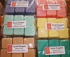 CHOOSE YOUR SCENT 24 Candle Wax Melts Strongly Scented Aprox 11 oz Total Wt