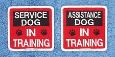 1 SERVICE ASSISTANCE DOG IN TRAINING PATCH 2.5 INCH Danny & LuAnns Embroidery