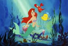 Little Mermaid Edible Party Cake Image Topper Frosting Icing Sheet