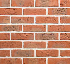 50x Red Facing Bricks 65mm   Pack of 50 Red House Bricks   Select colour