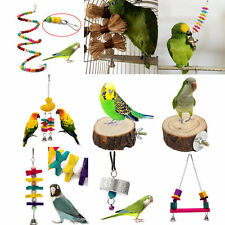 Latest Pet Bird Parrot Swing Cage Toy Chew Bites for Parakeet Cockatiel Cockatoo