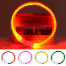 Rechargeable USB Band Safety Pet Dog Collar New Waterproof LED Flashing Light