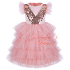 Girls Pink Princess Dress Flower Lace Wedding Pageant Party Holiday Kids Clothes