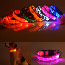 Adjustable Light Up for Flashing New Pet Dog Safety Collar LED Light Nylon