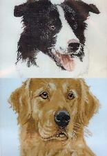 "ANCHOR COUNTED CROSS STITCH KIT  DOGS  15 * 15"" BORDER COLLIE GOLDEN RETRIEVER"