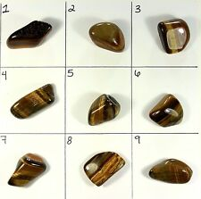 Tiger Eye Polished Tumbled Stone (YOU CHOOSE!)- Reiki/Chakra/Metaphysical (A)