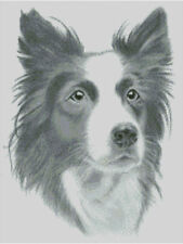 Cross stitch chart, pattern, Border Collie, Sheep Dog, Kennel Club, Canine