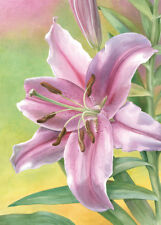 Pink Lily by Beth Grove Floral Print