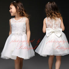Baby Girl Flower Embroidered Party Dress Wedding Christening Pageant Communion