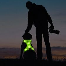 Control Dog Harness LED Pets Walking Accessory USB Rechargeable Soft Mesh Vest f