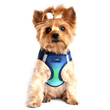 NEW American River Choke-Free Dog Harness - Northern Lights Ombre 3-90 lbs