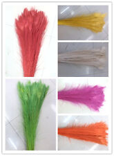 10/20/50 pcs peacock feather eye 28-32 inches / 70-80 cm in a variety of colors