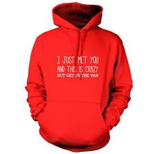 I Just Met You And This Is Crazy But Get In The Van - Unisex Hoodie - 9 Colours