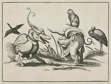 "Arent van Bolten : ""Monsters with Cat, Goose, Stork"" (1604-14) —  Fine Art Print"