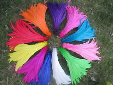 Wholesale 10/50/100 pcs high quality rooster tail feathers 12-14 inches 30-35cm