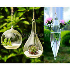 Hanging Glass Plant Flower Vase Hydroponic Creative Container Home Wedding Decor