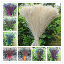 beautiful 10-100 pcs peacock feather eye 28-32 inches / 70-80 cm color selection
