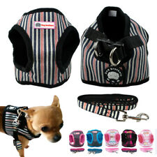 Didog Cute Nylon Puppy Dog Harness and Leash Set for Poodle Chihuahua Yorkie