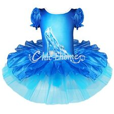 Girl Kid Princess Cinderella Ballet Dance Tutu Dress Dancewear Christmas Costume