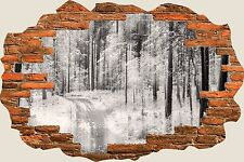 3D Hole in Wall Snowy Winters Forest View Wall Sticker Art Decal Wallpaper S26