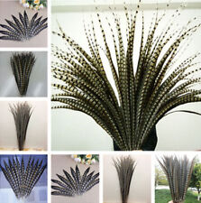 beautiful10-100pcs Natural golden pheasant tail Feathers 15-110cm/6-44inch