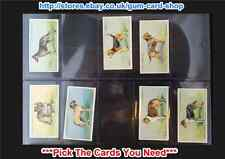 ☆ Wills - Dogs 1937 (G/F) *Pick The Cards You Need*