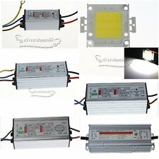20W 30W 50W 100W LED Chips Cool White + Waterproof  LED Driver High Power Supply