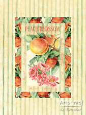 Peach Blossom by Vicky Howard- Art Print