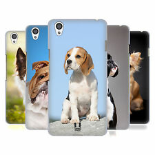 HEAD CASE DESIGNS POPULAR DOG BREEDS HARD BACK CASE FOR ONEPLUS X