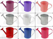 Mini Metal Watering Cans Wedding Party Christening Favour Gift Pails Buckets