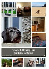 Holiday Cottage West Wales, Pet Friendly Nr beaches £250 pw for 2 Adults & Dogs