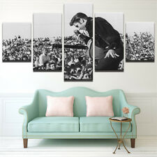 Framed Home Decor Canvas Print Painting Wall Art Elvis Presley Concert Poster 5P