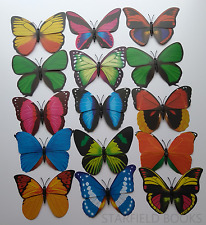 Large Pretty Butterfly Magnets Kitchen Fridge Decor Gift Art Craft Insect Nature