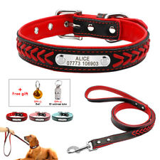 Custom Personalized Dog Collar&Leash Set for Beagle Terrier Labrador Puppies