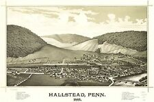 Poster Print Antique Old Maps 1887-1888 USA Hallstead Penn Map