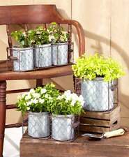 Vintage Farm Country Style Galvanized Planters In Wire Basket One, Two, Or Three