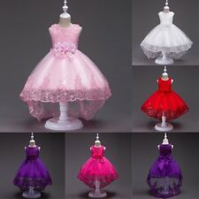 Baby Girl Lace Flower Princess Dress Kids Pageant Dance Wedding Gown Party Dress
