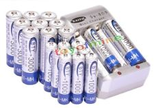 10AA +10AAA 1000mAh 3000mAh 1.2V NI-MH rechargeable battery /RC MP3 BTY+Charger