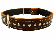 "Genuine Leather Studded Padded Dog Collar 18"" Long 3/4"" Wide Fits 12""-14.5"" Neck"