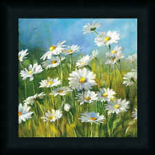 Summer Field II Danhui Nai White Daisy Field Framed Art Print Wall Décor Picture