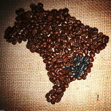 MIX & MATCH 3 BAGS OF FRESH BRAZILIAN COFFEE CERRADO MINAS GERAIS 3 OPTIONS