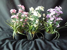 UK-G Artificial Phlox Flowers Potted Plant Indoor House Office White Pink Lilac