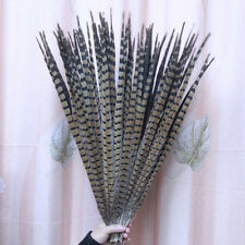Wholesale, 10-100pcs natural pheasant tail feathers of 50 -55 cm / 20-22 inch