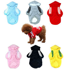 Warm Hoodie Sweater Cute Pullover Sweatshirt T-Shirt Clothing for Dog & Puppy