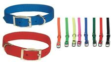 Single Ply Nylon Dog Collars - 3/4 in Wide - all colors - 16 to 24 inch - Buckle